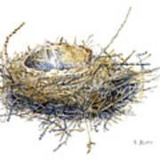 Bird's Nest Watercolor Painting Art Print