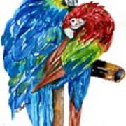 Birds Of Color Art Print