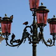 Birds On A Lamp Post In Venice Art Print