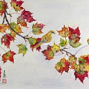 Birds On Maple Tree 1 Art Print