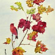 Birds On Maple Tree 12 Art Print