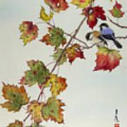 Birds On Maple Tree 4 Art Print