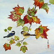 Birds On Maple Tree 9 Art Print