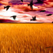 Birds Over Wheat Field Art Print by Anthony Caruso