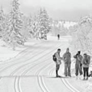 Birkebeiner Ski Trail Art Print