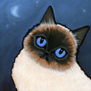 Birman Blue Night Art Print by Leanne Wilkes