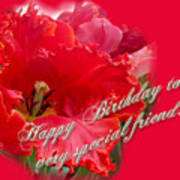 Birthday Special Friend - Red Parrot Tulip Art Print