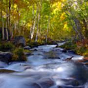 Bishop Creek In Fall Eastern Sierra Photograph Art Print