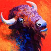 Bison Attitude Art Print