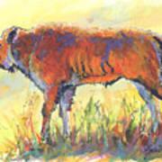 Bison Calf Art Print