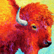 Bison Head Color Study Iv Art Print by Marion Rose