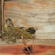Bitty Birds Art Print