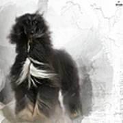 Black And Tan Afghan Hound In The Wind Art Print