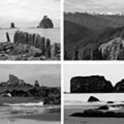 Black And White Olympic National Park Collage Art Print