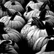 Black And White Pumpkins Art Print