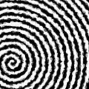 Black And White Spiral Art Print