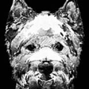 Black And White West Highland Terrier Dog Art Sharon Cummings Art Print