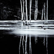 Black And White Winter Thaw Relections Art Print