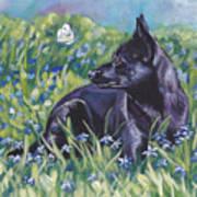 Black Australian Kelpie Art Print