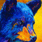 Black Bear Cub 2 Art Print