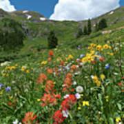 Black Bear Pass Landscape Art Print