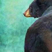 Black Bear's Bum Art Print