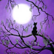 Black Cat In Mossy Tree Art Print