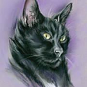 Black Cat Sith Art Print