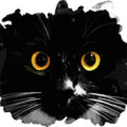Black Cat, Yellow Eyes Art Print