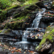 Black Creek Falls In Autumn, 2016 Art Print