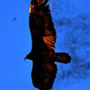 Black Eagles Vision Art Print