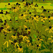 Black Eyed Susan Work Number 21 Art Print