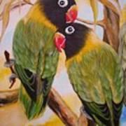 Black Faced Love Birds.  Chloe The Flying Lamb Productions  Art Print