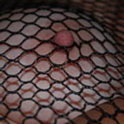 Black Fishnet Art Print