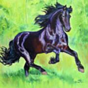 Black Friesian Horse Art Print
