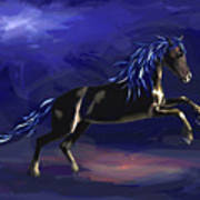 Black Horse At Night Art Print
