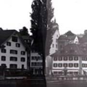 Black Lucerne Art Print