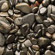 Black River Stones Portrait Art Print by Steve Gadomski