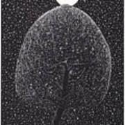 Black Shadow Tree Art Print
