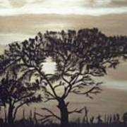 Black Silhouette Tree Art Print