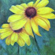 Blackeyed Susan Art Print