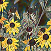 Blackeyed Susans Watercolor Art Print