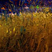 Blades Of Grass Art Print