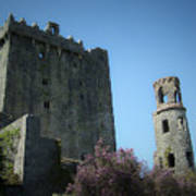 Blarney Castle And Tower County Cork Ireland Art Print