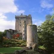 Blarney Castle, Co Cork, Ireland Art Print by The Irish Image Collection