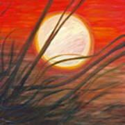 Blazing Sun And Wind-blown Grasses Art Print