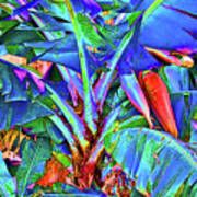 Bleu Banana Art Print