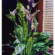 Blind Luck Lilies Art Print