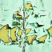 Blistered Paint Art Print