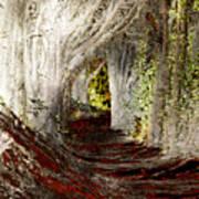 Blood Redwoods Art Print